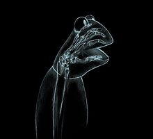 Kermit the frog x-ray by ludlowghostwalk