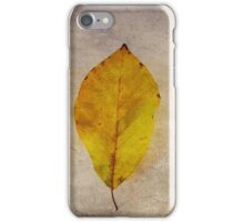 Remnants of the Past iPhone Case iPhone Case/Skin