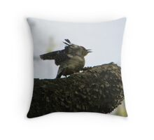 redbellied woodpecker opens wings Throw Pillow