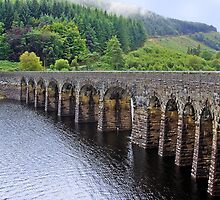 Elan Valley by Lauren Tucker