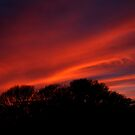 Sunset on New Year's Day by Laura Jane Robinson