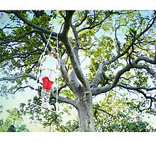 Tree trapezi Photographic Print