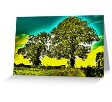 HDR Trees Greeting Card