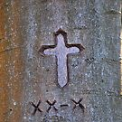 Tree Carving by relayer51