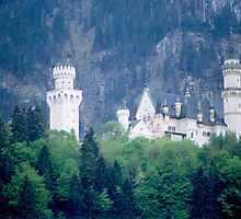 Neuschwanstein Castle, Germany by BearheartFoto