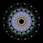 Mandala - Centipede Star by Christopher Marshall