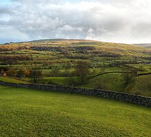 Late Wensleydale Sun by Mat Robinson