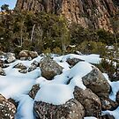 Organ Pipes on Mt Wellington #5 by Chris Cobern