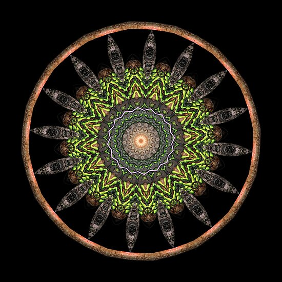 Mandala - Anciently Modern by Christopher Marshall