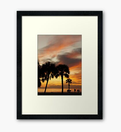 Tropical Vacation Framed Print