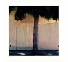 Dreamy Urban Tree and Fence  Art Print