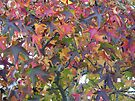 Autumn Color Riot by MotherNature