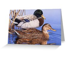 Mallards Greeting Card