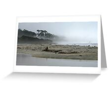 mahitahi river mouth.bruce bay.south westland.nz Greeting Card