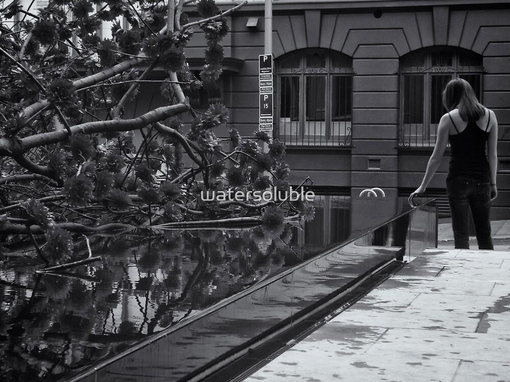 quiet reflection by dennis william gaylor