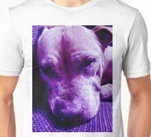 Purple Pitbull Unisex T-Shirt