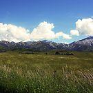 Arthurs Pass New Zealand by Waqar