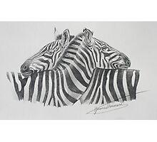 stripe me Photographic Print