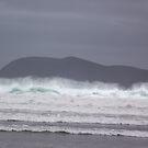 windy surf day on a Bruny Island beach by gaylene