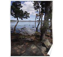 Tooms Lake (Tasmania) - tranquillity Poster
