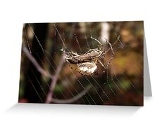 Spider with Prey Greeting Card