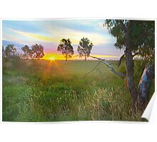 Sunset at Ballarat, Vic, Australia Poster