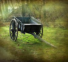 Historic agricultural vehicle, Mount Vernon by Bine