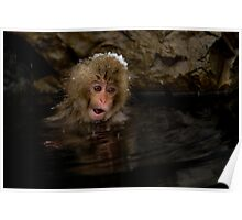 Monkey Magic #3 Poster