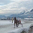 Trotting race,Boxing day Austria. by sandyprints