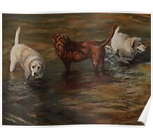 Pastel Painting - Labrador Retrievers in Cherry Creek Poster