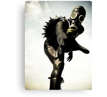 Zentai Hedgehog 01 Canvas Print