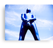 A Day in Blue Zentai lomo 06 Canvas Print