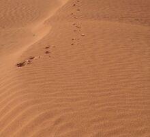 Red Sand by MihrimahGhaziya