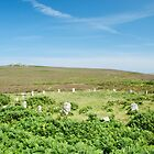 Tregeseal Stone Circle by Neil Cox