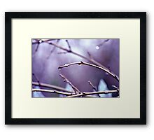We see what we want to see Framed Print