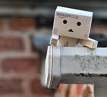 Danbo climbs to success by Care Johnson