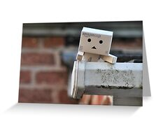 Danbo climbs to success Greeting Card