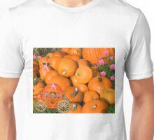 ╭∩╮( º.º )╭∩╮Ontario Pumpkins & Pumpkin Carriage ~ Raising Awareness-PILLOWS-TOTE BAGS,JOURNALS ECT.. ╭∩╮( º.º )╭∩╮  Unisex T-Shirt