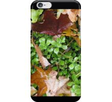 Autumn Leaves and Green iPhone Case/Skin