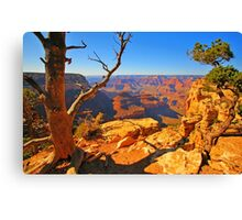 Nature`s Grand Canvas Print