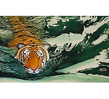 Tiger waters Photographic Print