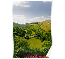 Upperdale from Monsal Head  Poster