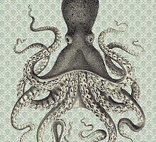 Octopus by curiouslondon