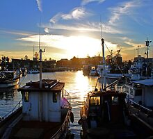 The Harbour -Wollongong- by Evita
