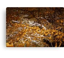 snowy night scene Canvas Print