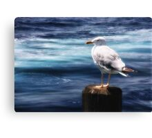 one day I'll fly to Helgoland Canvas Print