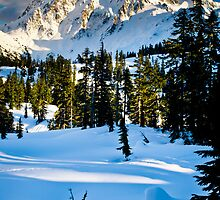 North Cascades Winter by Inge Johnsson
