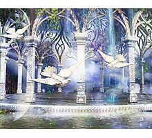 HEAVENLY THRESHOLD Photographic Print