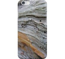 Natural Abstract* iPhone Case/Skin
