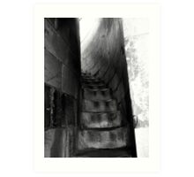 Pisa Stairway Art Print
